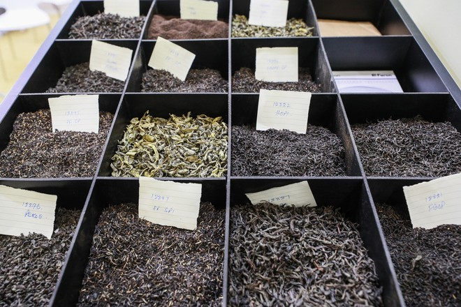 Учёные выяснили, как употребление чая влияет на продолжительность жизни