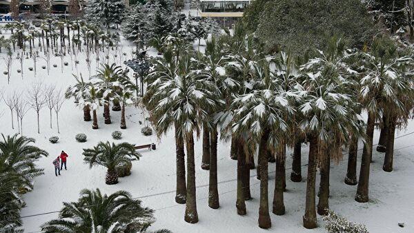 В Сочи объявили штормовое предупреждение из-за ливней и снегопада
