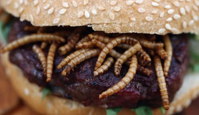 Европейцам разрешат питаться жуками для разнообразия меню