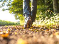 Как даже короткая прогулка может улучшить вашу память: советы ученых