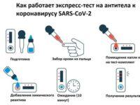Насколько точен анализ на антитела к коронавирусу и как его расшифровать