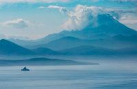 У заказника «Вулканы Камчатки» зафиксировали массовую гибель морских животных