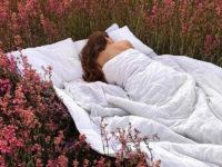 Все, что вы хотели знать о гормоне сна мелатонине