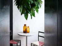 Растения в интерьере: 35+ креативных идей