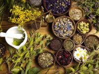 Травяной гороскоп: лечебные травы и знаки Зодиака