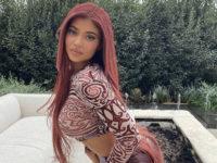 Гипнотический кроп-топ + кожаные брюки цвета бургунди: Кайли Дженнер выбирает наряд под новый цвет волос
