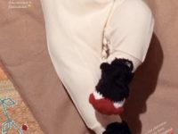 Сладкий подарок: новые фото новорожденной дочки Джиджи Хадид и Зейна Малика