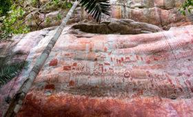 В Колумбии обнаружили наскальные росписи, сравнимые с фресками Cикстинской капеллы