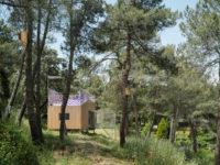 Микродом в сосновом лесу в Испании