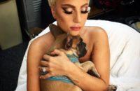 Леди Гага вернула похищенных собак. Певица пообещала за них награду в 500 000 долларов