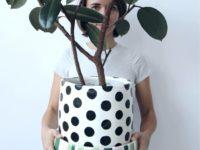 Новые имена: художник-керамист Ана Миро