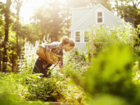 Мировое исследование «голубых зон» Земли: 10 правил долгой счастливой жизни