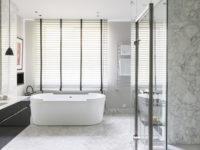Стеклянные перегородки и экраны в ванной комнате: 25+ примеров