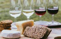 Учёные выяснили, что вино и сыр помогают снизить риск деменции