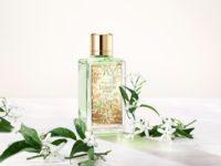 Мои прекрасные жасмин и роза: +2 парфюмерные новинки Lancôme, которые поднимут вам настроение