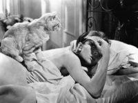 Скажи мне, как ты спишь: четыре гаджета, которые радикально изменят вашу жизнь в лучшую сторону